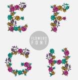 kolorowy kwiatu chrzcielnicy ilustraci wektor Zdjęcie Royalty Free