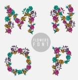 kolorowy kwiatu chrzcielnicy ilustraci wektor Zdjęcia Royalty Free