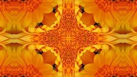 Kolorowy kwiatu kalejdoskop royalty ilustracja