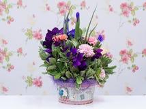 Kolorowy kwiatu przygotowania Obraz Stock