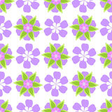kolorowy kwiecisty deseniowy bezszwowy Zdjęcie Stock