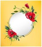 Kolorowy kwiecisty tło z pięknymi kwiatami Czerwoni maczki i liście Zdjęcia Stock
