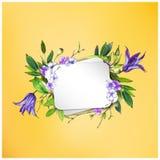 Kolorowy kwiecisty tło z pięknymi kwiatami Purpurowego Clematis kwiat, hortensja i liście, Fotografia Royalty Free