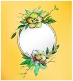 Kolorowy kwiecisty tło z pięknymi kwiatami Zielony Helleborus i liście Fotografia Stock
