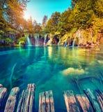 Kolorowy lato ranek w Plitvice jezior parku narodowym Zdjęcie Stock