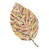 Kolorowy liść odizolowywający na bielu Zdjęcia Royalty Free