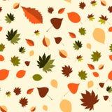 Kolorowy liścia tło, eps10 wektor Fotografia Royalty Free