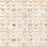 Kolorowy malujący motyli tło wzór Zdjęcia Stock