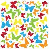 Kolorowy motyl odizolowywający na białym tle ilustracji