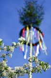 Kolorowy niemiecki maypole w wiośnie zdjęcia stock