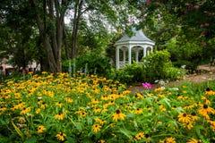 Kolorowy ogród i gazebo w parku w Aleksandria, Virginia obrazy royalty free