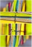 Kolorowy ogródu ogrodzenie - 4 divider Zdjęcia Royalty Free