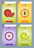 Kolorowy owoc sztandar dla app projekta 3 Fotografia Stock