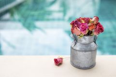 Kolorowy papier róży kwiat w blaszanym garnku Obrazy Royalty Free