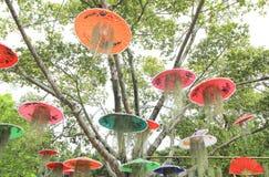 Kolorowy parasol w ogródzie Obrazy Royalty Free