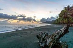 Kolorowy Plażowy zmierzch przy Corcovado parkiem narodowym, Costa Rica obraz stock