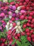Kolorowy pokaz rzodkwie przy sklepem spożywczym obraz stock