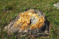 Kolorowy pomarańcze i bielu liszaj na wielkim głazie na trawiastym zboczu zdjęcia stock