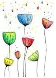 Kolorowy poppies† kwitnie wodnego koloru illustraion Obrazy Royalty Free