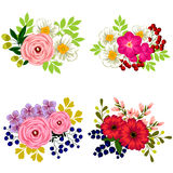 kolorowy projekta elementów kwiatu set Zdjęcie Royalty Free
