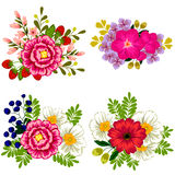 kolorowy projekta elementów kwiatu set Fotografia Stock