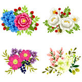 kolorowy projekta elementów kwiatu set Obraz Royalty Free