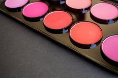 Kolorowy rumiena set barwi fachowych różnych kosmetyków eyeshadows Zdjęcie Royalty Free