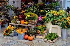 Kolorowy rynek w Regensburg, Niemcy fotografia royalty free