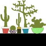 Kolorowy set z kaktusem w garnku Obrazy Stock