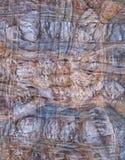 Kolorowy skrzyżowanie wykłada w naturalnym kamieniu zdjęcie stock