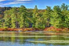 Kolorowy spadek scenerii widok przy zmierzchem Obrazy Stock