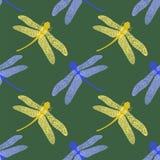 Kolorowy Stilized Dragonfly na Zielonym tle Insekta loga projekt Aeschna Viridls Obraz Stock