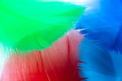 kolorowy tła piórko obraz stock