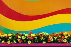 Kolorowy tło z kwiatu łóżkiem Obrazy Stock