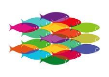 Kolorowy tłum ryba Fotografia Royalty Free