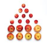 Kolorowy w postaci domu odizolowywającego na białym tle wiele czerwone jabłko owoc Obraz Stock