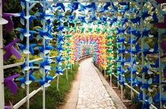 Kolorowy wiatraczek obrazy royalty free