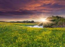 Kolorowy wiosna krajobraz na siver obrazy stock