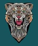 Kolorowy wizerunek gniewny lampart obrazy stock