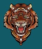 Kolorowy wizerunek gniewny tygrys obraz stock