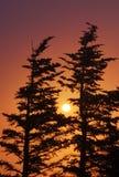 Kolorowy wschód słońca Fotografia Stock