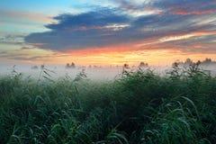 Kolorowy wschód słońca przy polem Zdjęcie Royalty Free