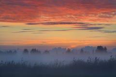 Kolorowy wschód słońca przy polem Fotografia Royalty Free
