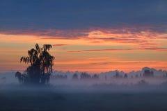 Kolorowy wschód słońca przy polem Obrazy Royalty Free