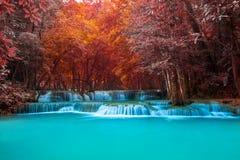 Kolorowy wyobraża sobie tropikalną siklawę i błękitną lagunę Obrazy Royalty Free
