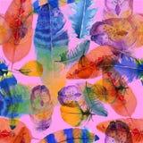Kolorowy wzór robić z piórkami ilustracji