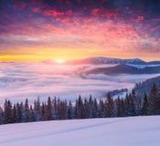 Kolorowy zima wschód słońca w mgłowych górach Zdjęcie Stock
