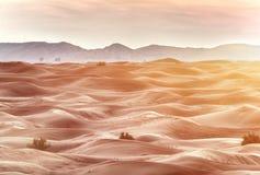 Kolorowy zmierzch nad pustynią Zdjęcia Royalty Free