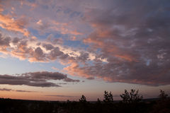 Kolorowy zmierzch z chmurami i drzewami Zdjęcie Royalty Free