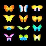 kolorowych motyli loga wektorowy set Latających insektów logotypy inkasowi Dzikie natura elementów ikony skrzydła Obrazy Stock